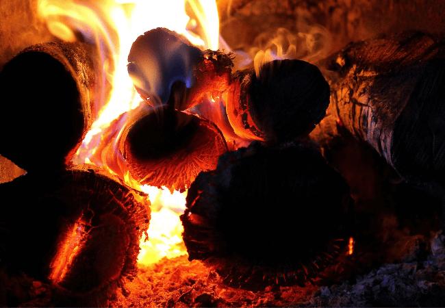 Alder Firewood - A Good Firewood Choice?