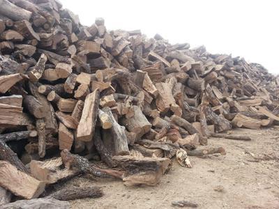Lots of wood