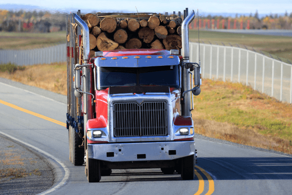 Logs For Firewood - By The Truckload