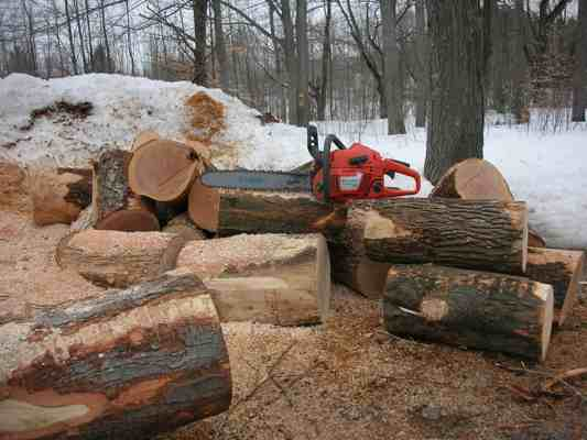 Logs For Firewood By The Truckload