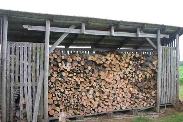 How To Season Firewood 10 Tips For Dry Firewood